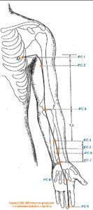 Kringloopmeridiaan:hartbeschermer-acupunctuur - Gezondheid! - houding verbeteren-geluk- stress