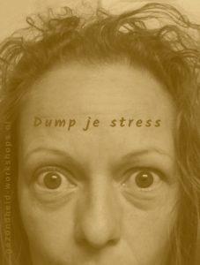 DUMP JE STRESS.gezondheid-workshops. burnout symptomen, stress, hoofdpijn, vermoeidheid, overspannen, onstpannen.Jeanine Theunissen. stress op kantoor, vitaliteit op de werkvloer, ontspannen op je werk