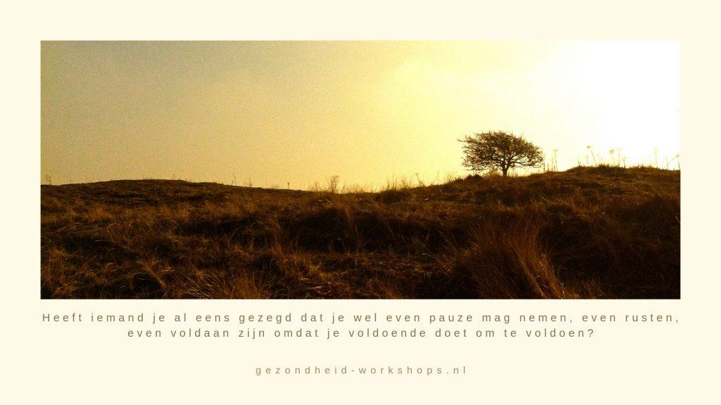 Stress, burnout symptomen, burn out klachten, Stress EHBO, EnerQi Flow, gezondheid, chronische vermoeidheid, Jeanine Theunissen, gezondheid-workshops.nl